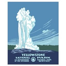 Yellowstone National Park Canvas Art